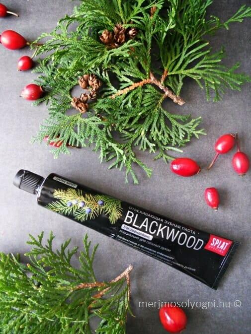 SPLAT Blackwood fogkrém borókabogyó aromával és nyírfaszén színezéssel. /Kép: merjmosolyogni.hu/