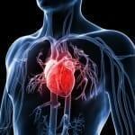Ínygyulladás és szívbetegség – Tisztázódott kapcsolat