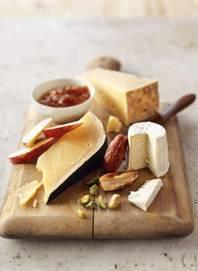 sajt-fogak
