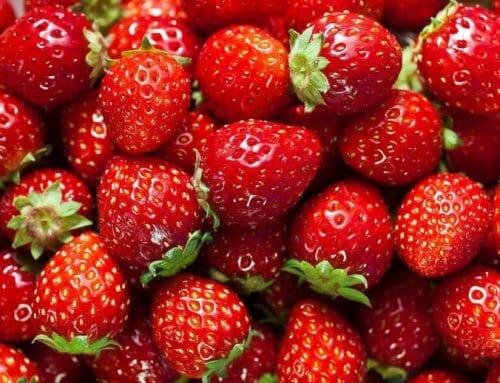 Az eper megelőzheti a szájüregi rák kialakulását